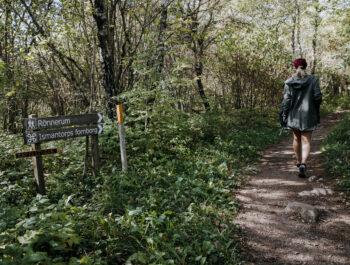 'Vackra vandringsleder rustas upp' bild