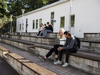 'Högstadiet återgår till undervisning på plats – Kulturskolan och fritidsgårdarna öppnar upp' bild