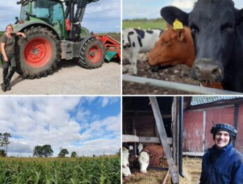 'Lantbrukssafari – vi vill besöka dig och ditt företag' bild